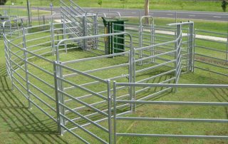 cattle panels for sale