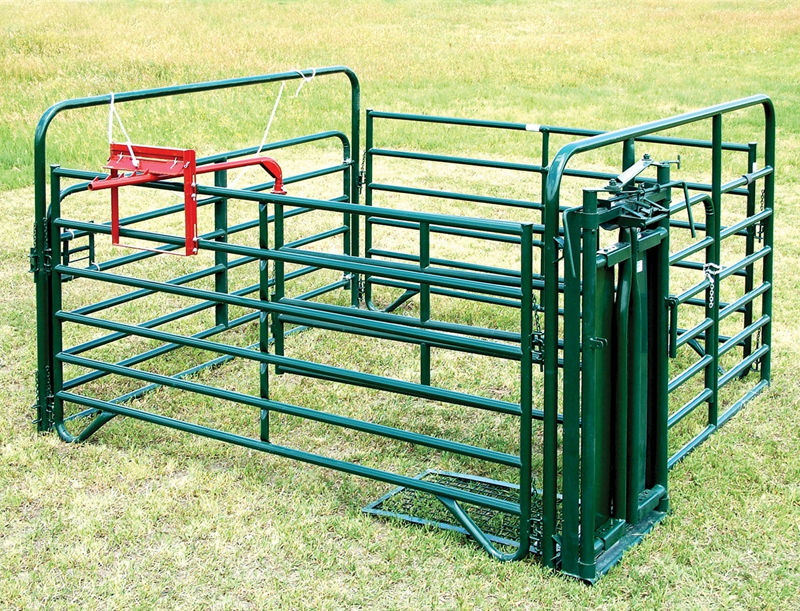 iron cattle pen